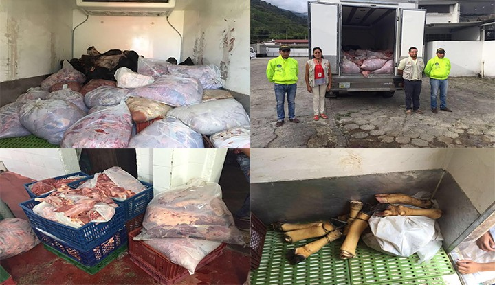 Carne de caballo pretendía ser negociada en Ibagué