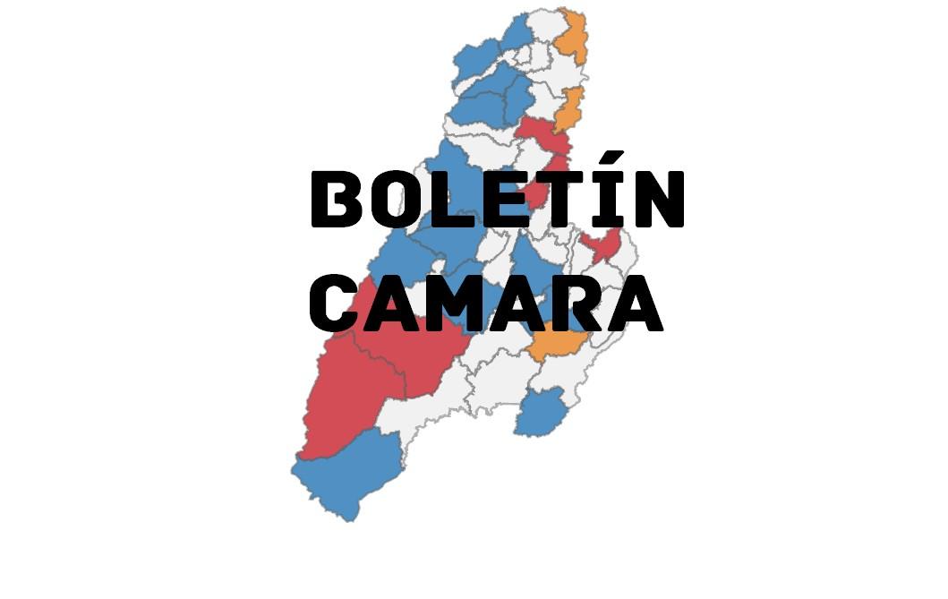 Boletín N.7 Camara por el Tolima