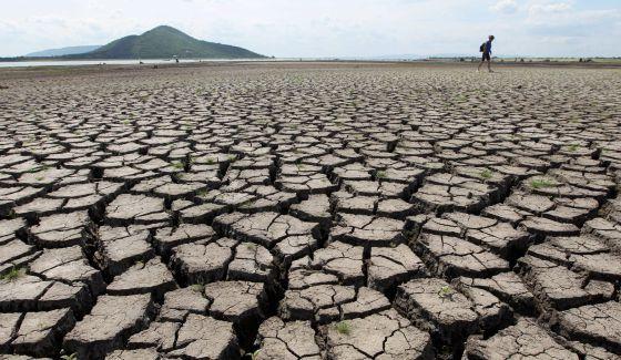Tolima le hará frente al cambio climático