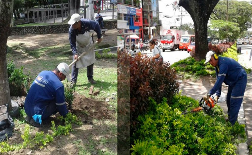 Comenzó la recuperación de zonas verdes de Ibagué
