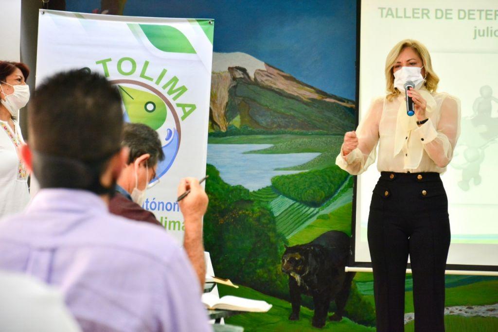 Olga Lucía Alfonso Lannini Directora general de Cortolima en reunión proceso de revisión y ajuste de los POT