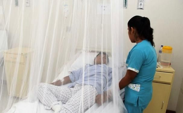 El dengue, un virus silencioso que también mata