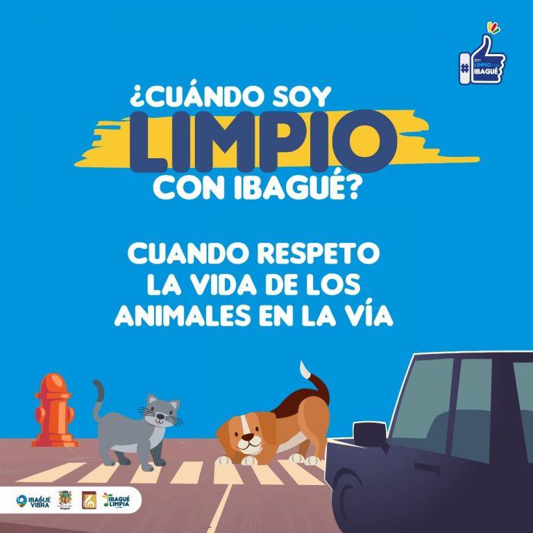#IbaguéLimpia: