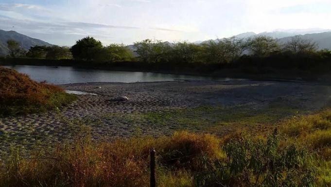 Constructora Bolívar, seco Laguna para construir casas: Denuncia
