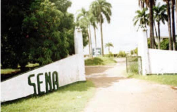 Covid-19 generó emergencia en sede del Sena en El Espinal