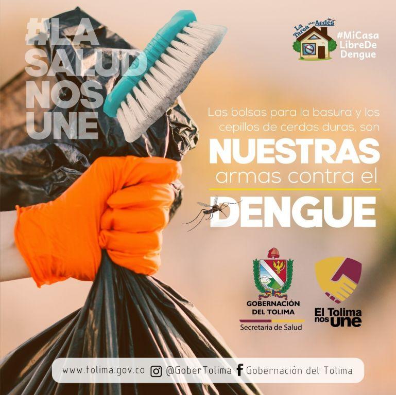Dengue, un vector latente en el Tolima