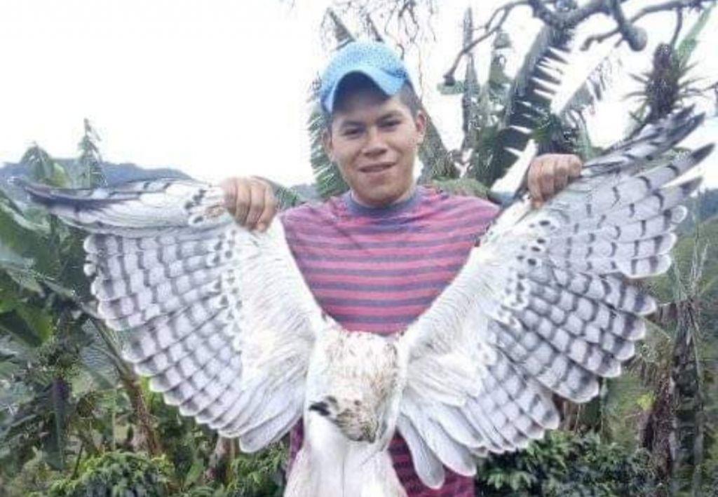 Atentado contra águila que es una especie protegida