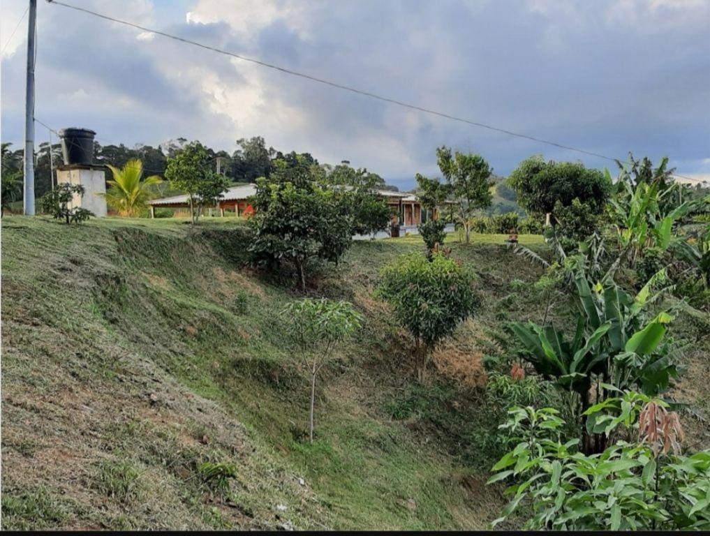 El extraño hallazgo óseo, en zona rural de Ibagué